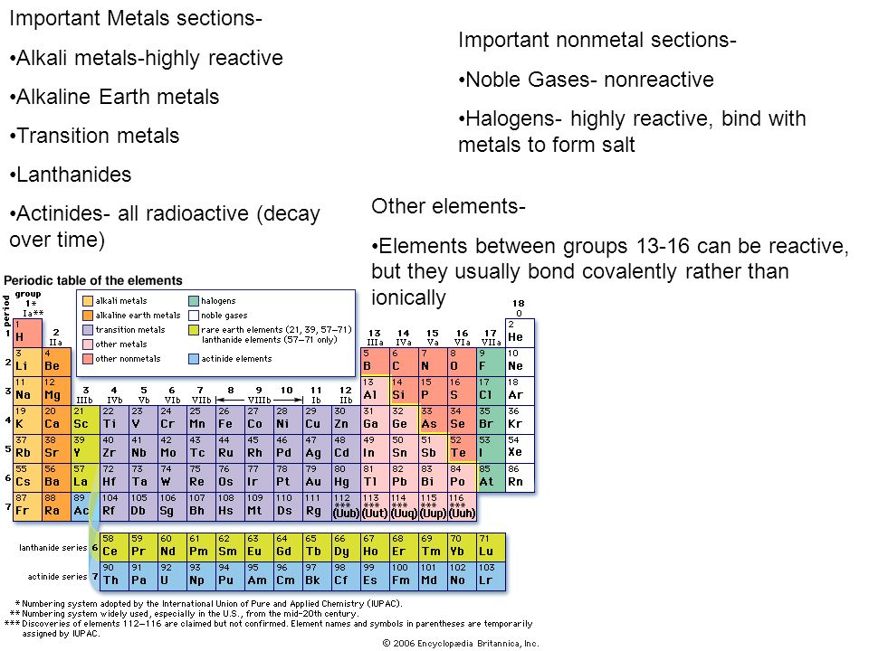 Important Metals sections- Alkali metals-highly reactive Alkaline Earth metals Transition metals Lanthanides Actinides- all radioactive (decay over ti