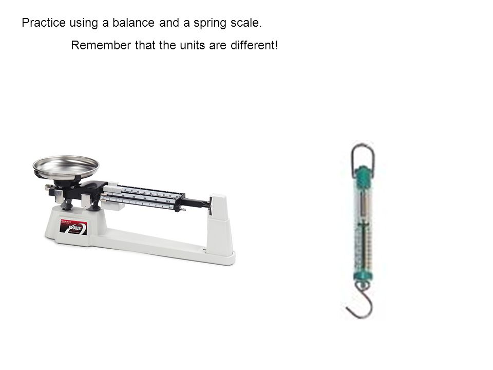 Practice using a balance and a spring scale. Remember that the units are different!
