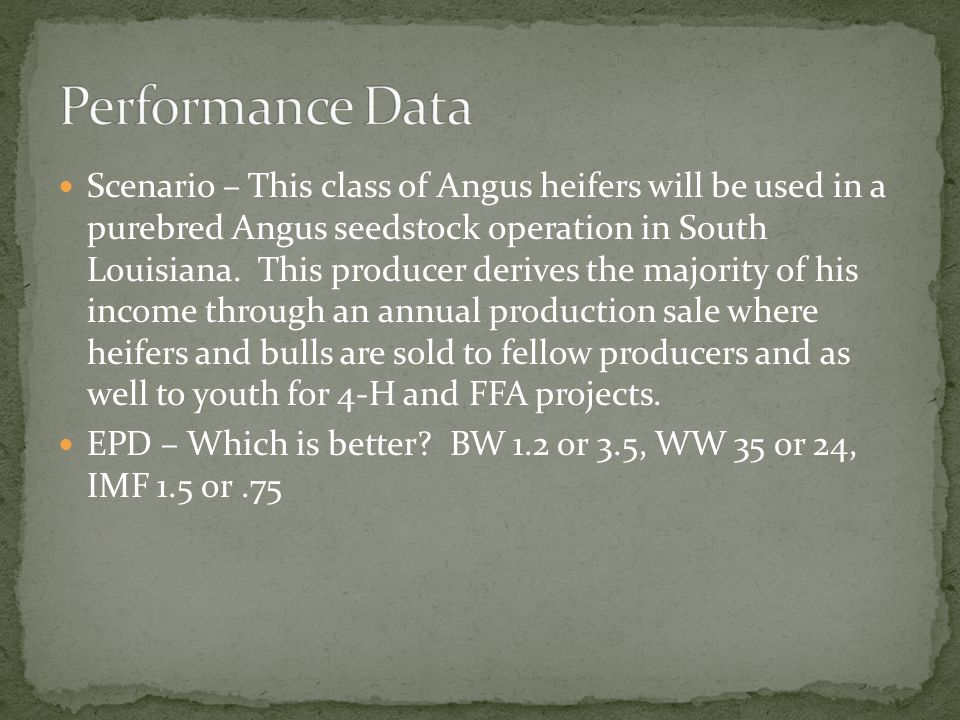 Scenario – This class of Angus heifers will be used in a purebred Angus seedstock operation in South Louisiana. This producer derives the majority of