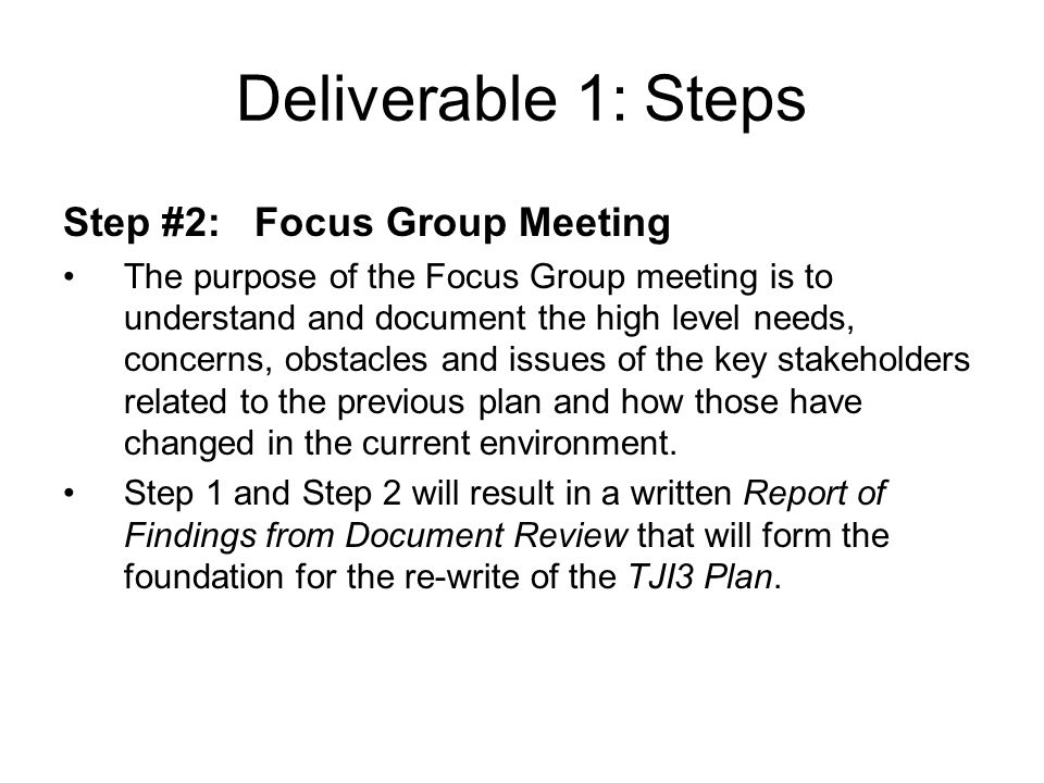 Deliverable 1: Steps Step #2: Focus Group Meeting The purpose of the Focus Group meeting is to understand and document the high level needs, concerns, obstacles and issues of the key stakeholders related to the previous plan and how those have changed in the current environment.