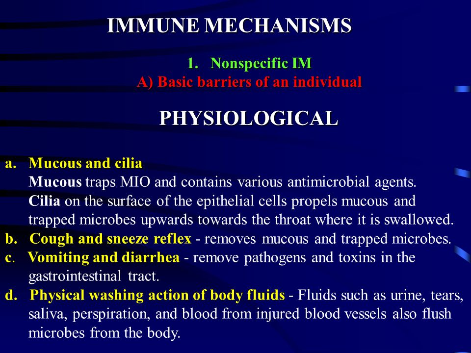 IMMUNE MECHANISMS 1.Nonspecific IM A) Basic barriers of an individual ANATOMICAL a. Skin - consists of the epidermis and the dermis b. Mucous membrane