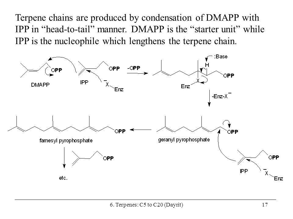 6. Terpenes: C5 to C20 (Dayrit)17 Terpene chains are produced by condensation of DMAPP with IPP in head-to-tail manner. DMAPP is the starter unit whil