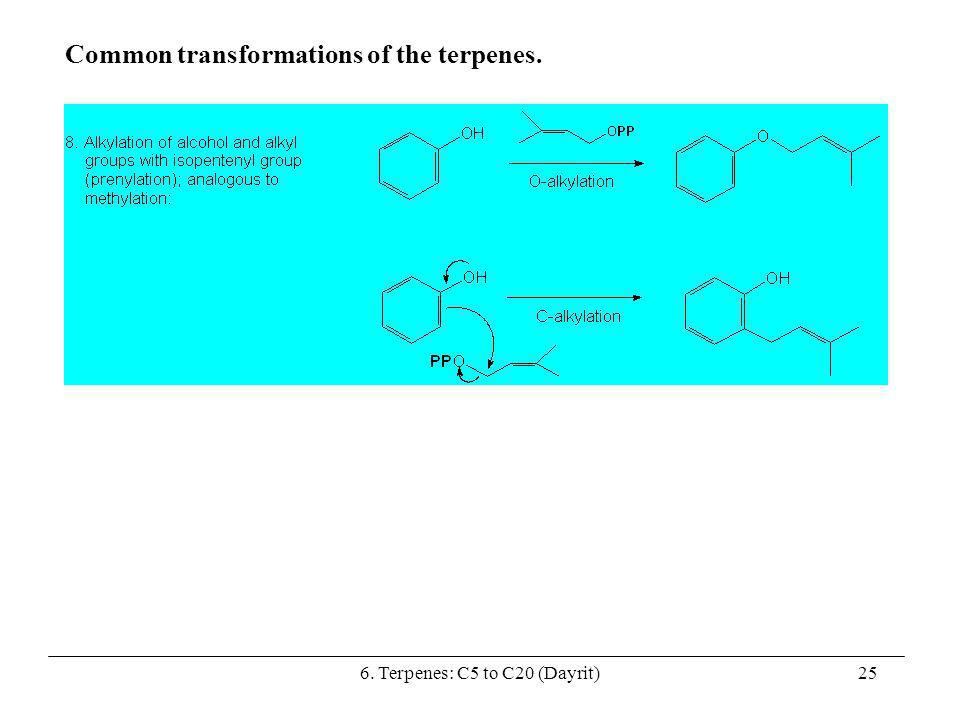 6. Terpenes: C5 to C20 (Dayrit)25 Common transformations of the terpenes.