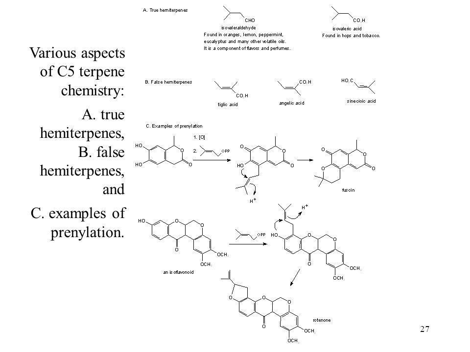 27 Various aspects of C5 terpene chemistry: A. true hemiterpenes, B. false hemiterpenes, and C. examples of prenylation.