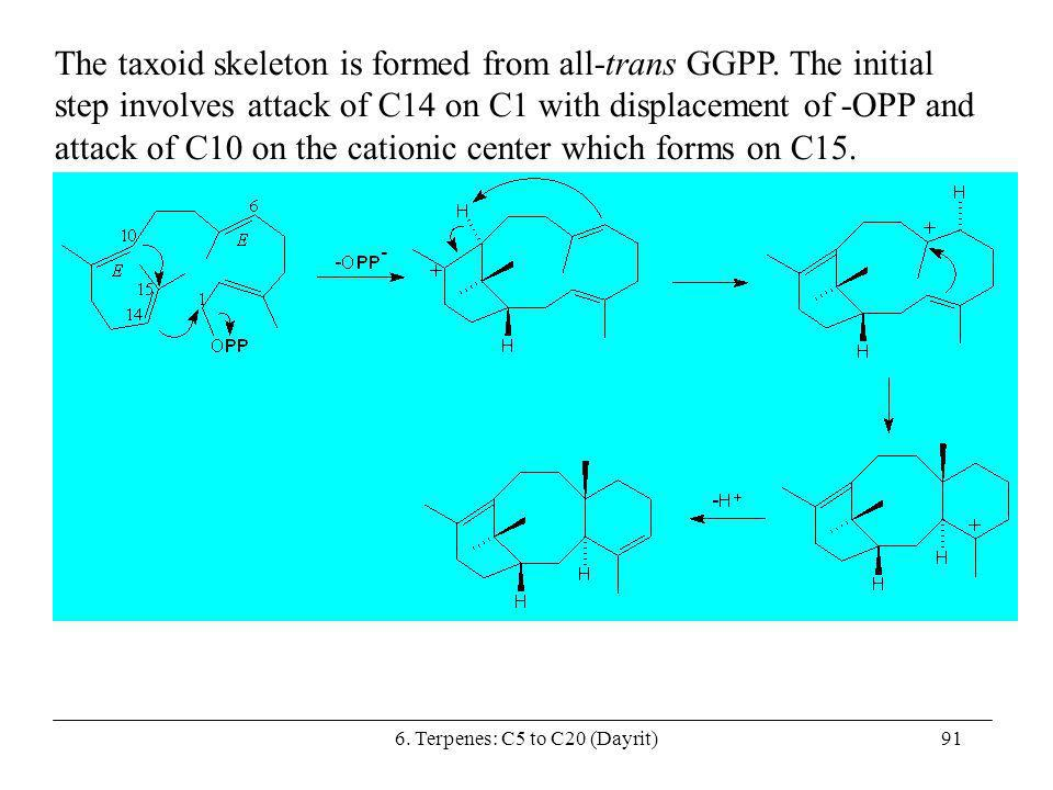 6. Terpenes: C5 to C20 (Dayrit)91 The taxoid skeleton is formed from all-trans GGPP. The initial step involves attack of C14 on C1 with displacement o