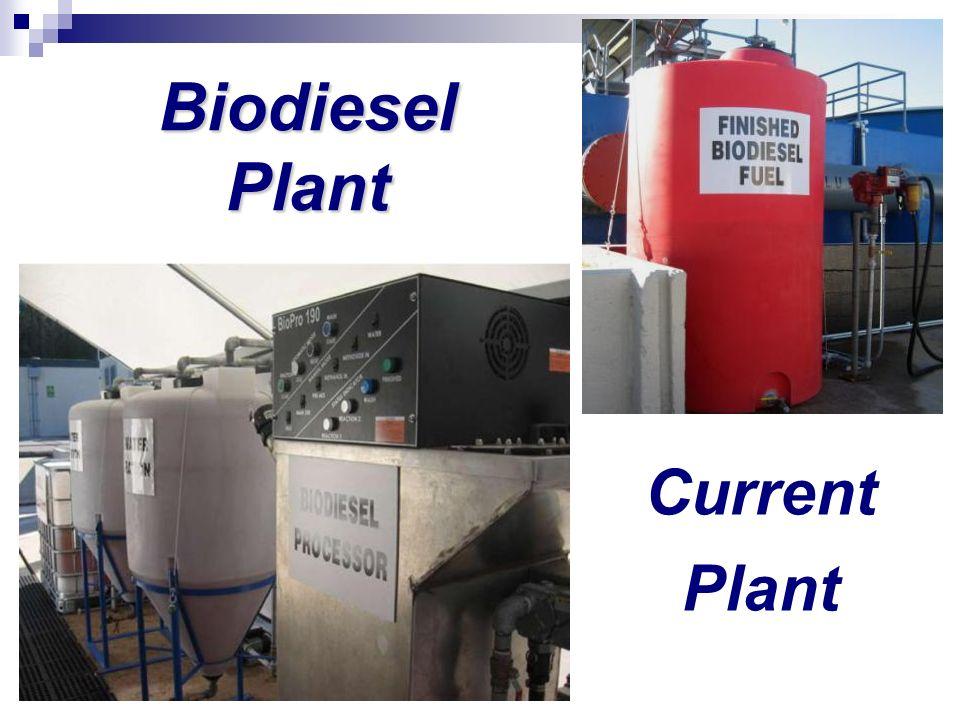 Biodiesel Plant Current Plant