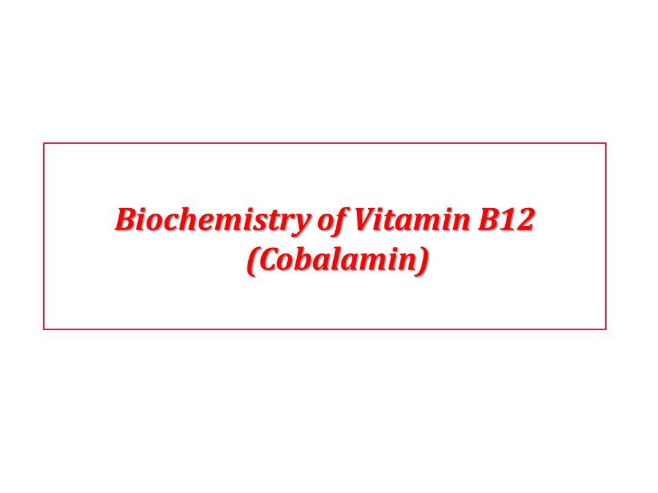 Biochemistry of Vitamin B12 (Cobalamin)