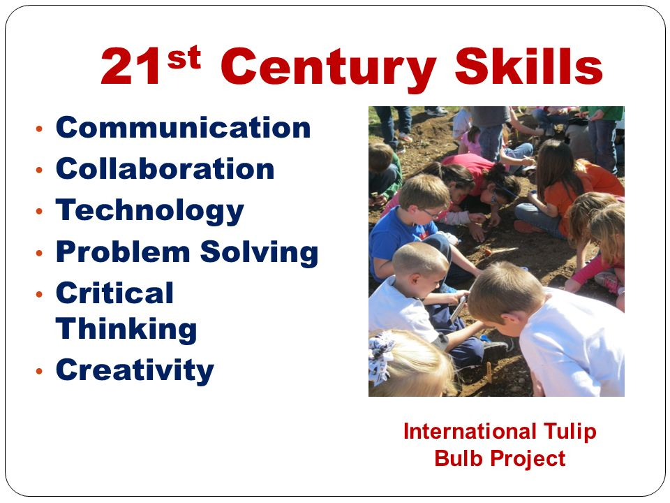 21 st Century Skills Communication Collaboration Technology Problem Solving Critical Thinking Creativity International Tulip Bulb Project
