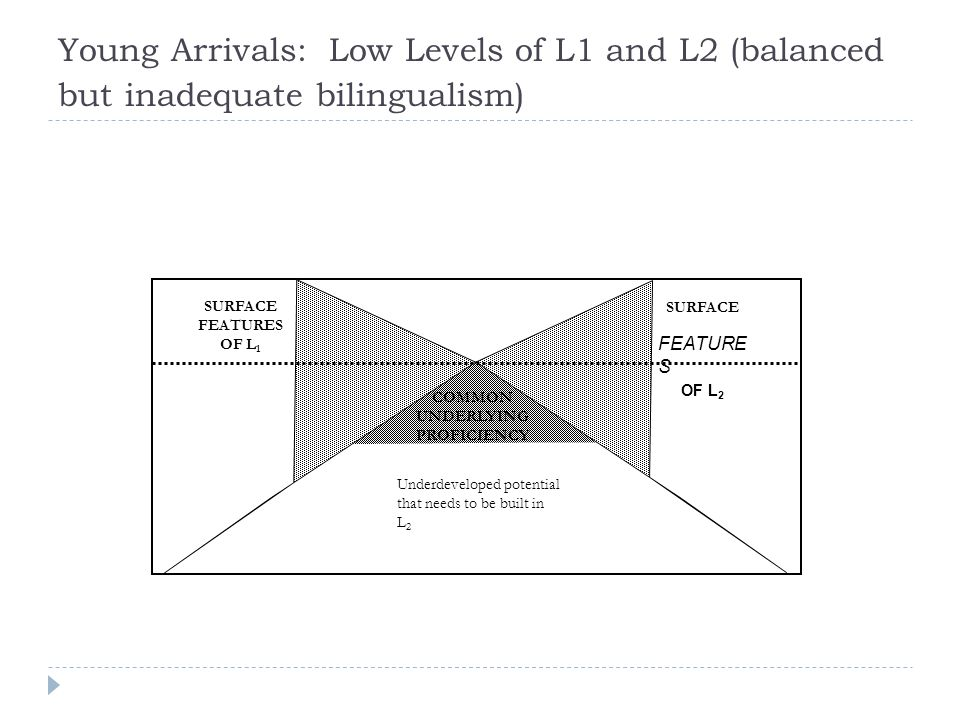 Young Arrivals: Low Levels of L1 and L2 (balanced but inadequate bilingualism) Underdeveloped potential that needs to be built in L 2 SURFACE FEATURE