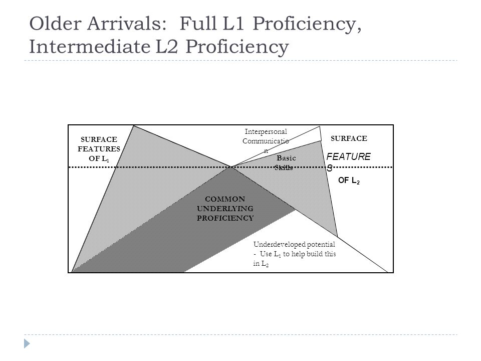 Older Arrivals: Full L1 Proficiency, Intermediate L2 Proficiency Underdeveloped potential - Use L 1 to help build this in L 2 SURFACE FEATURE S OF L 2