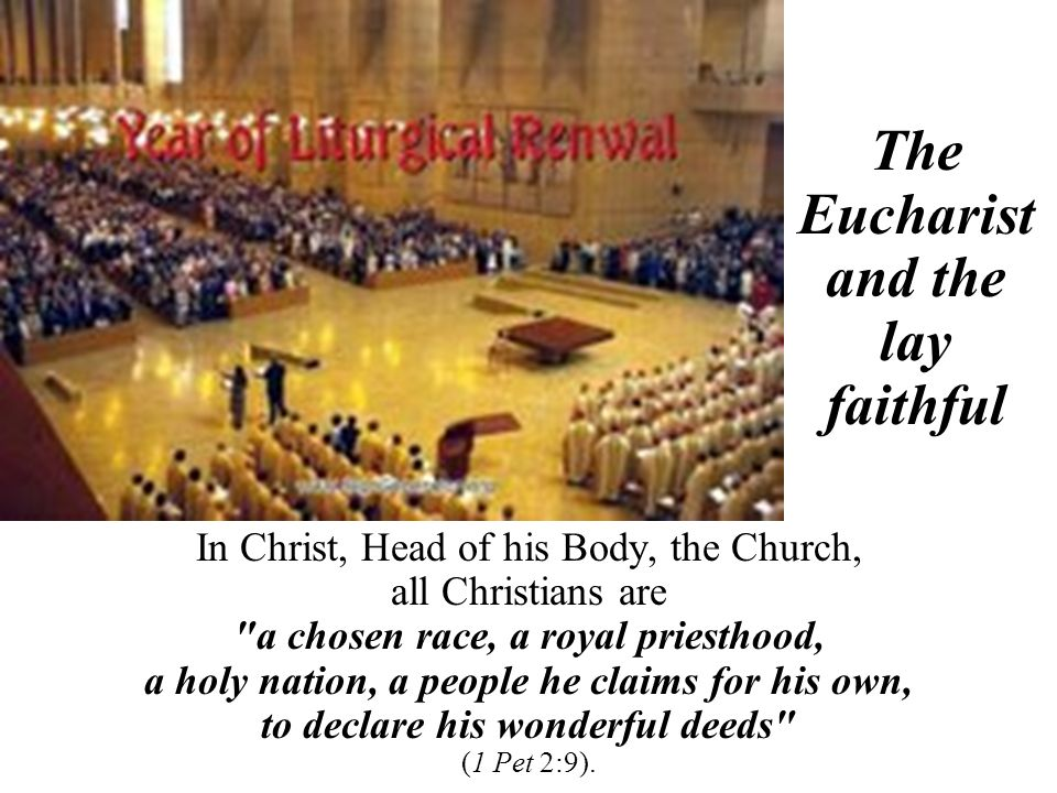In Christ, Head of his Body, the Church, all Christians are