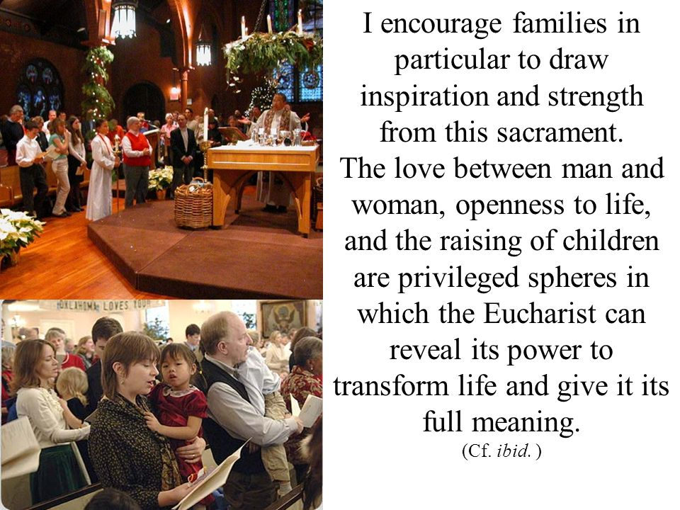 I encourage families in particular to draw inspiration and strength from this sacrament. The love between man and woman, openness to life, and the rai