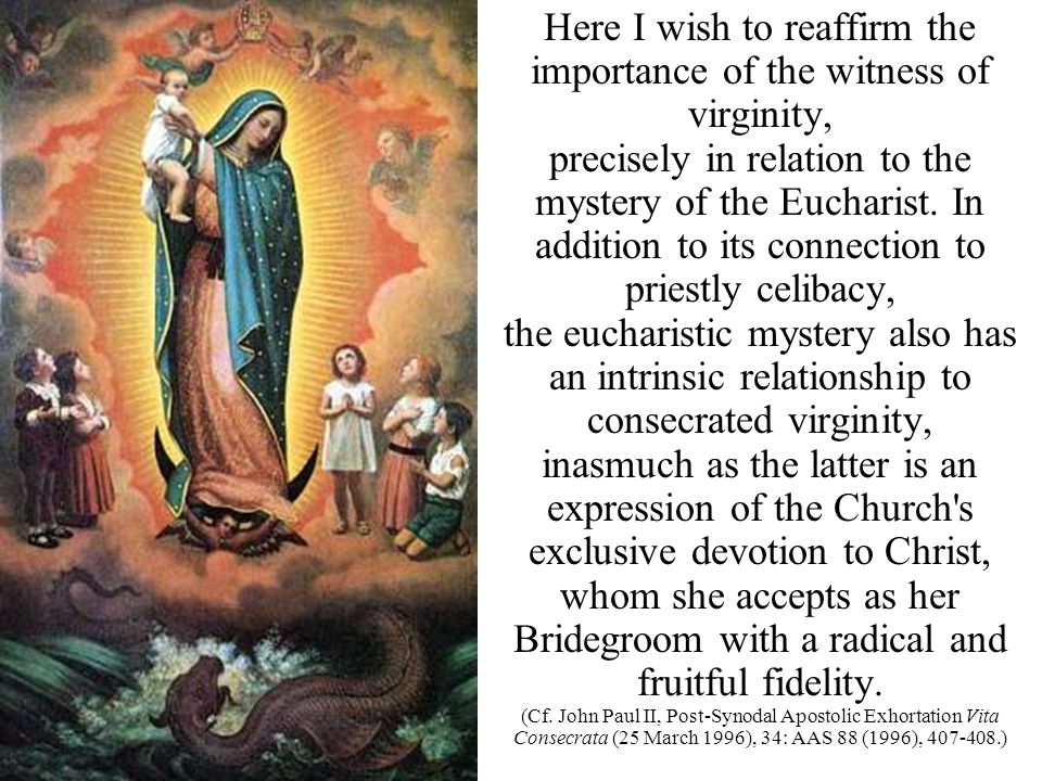 Here I wish to reaffirm the importance of the witness of virginity, precisely in relation to the mystery of the Eucharist. In addition to its connecti