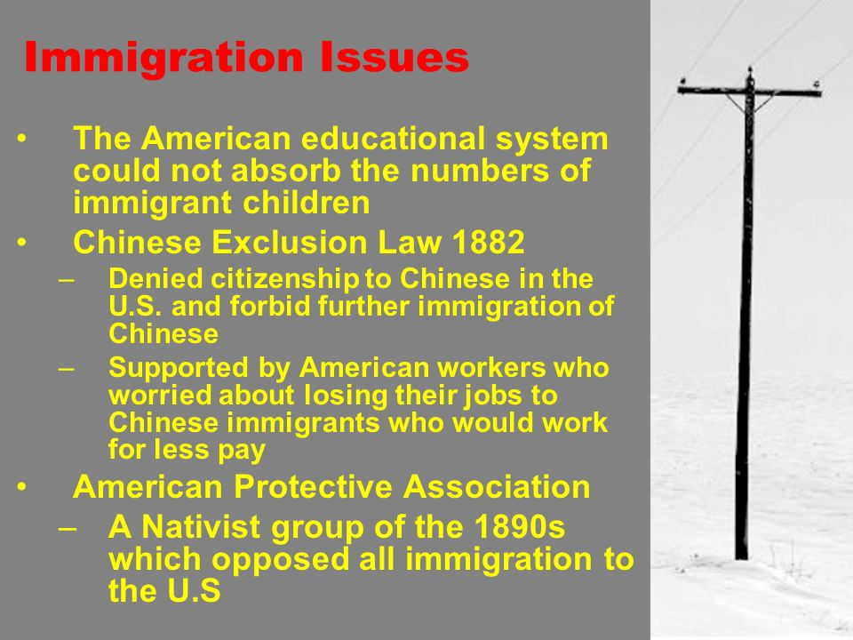 Immigration Issues The American educational system could not absorb the numbers of immigrant children Chinese Exclusion Law 1882 –Denied citizenship to Chinese in the U.S.