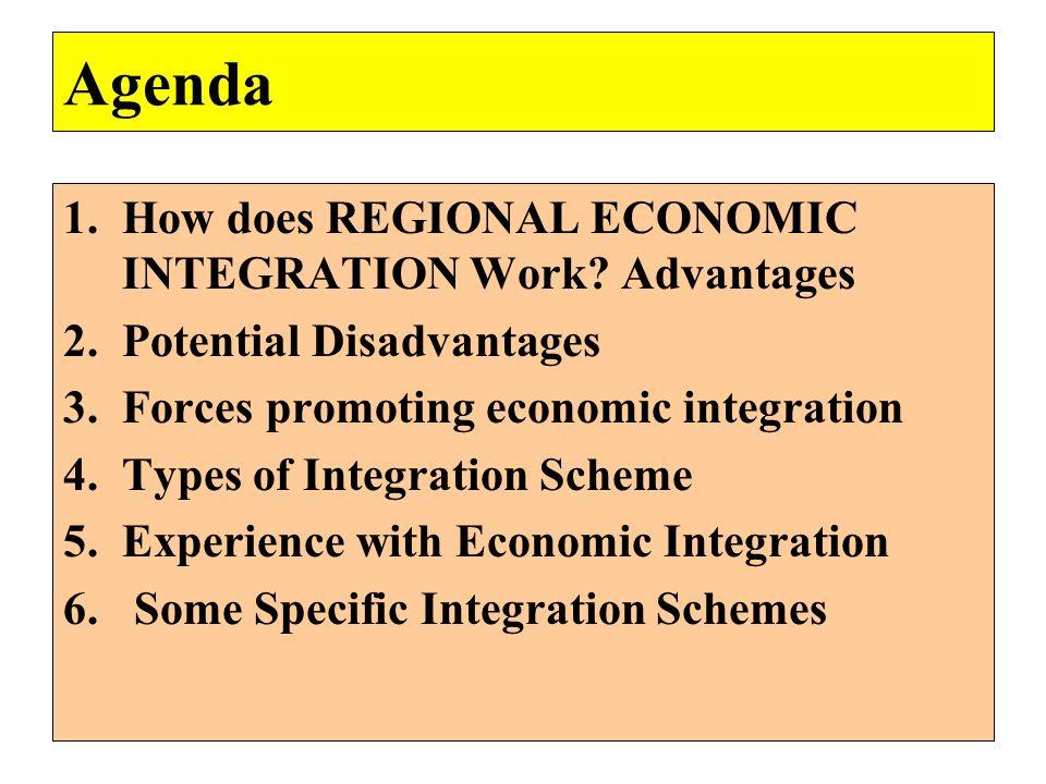 Agenda 1.How does REGIONAL ECONOMIC INTEGRATION Work? Advantages 2.Potential Disadvantages 3.Forces promoting economic integration 4.Types of Integrat