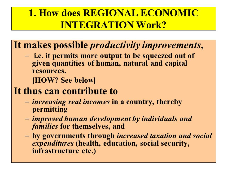 1. How does REGIONAL ECONOMIC INTEGRATION Work? It makes possible productivity improvements, – i.e. it permits more output to be squeezed out of given