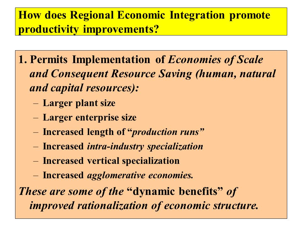 How does Regional Economic Integration promote productivity improvements? 1. Permits Implementation of Economies of Scale and Consequent Resource Savi