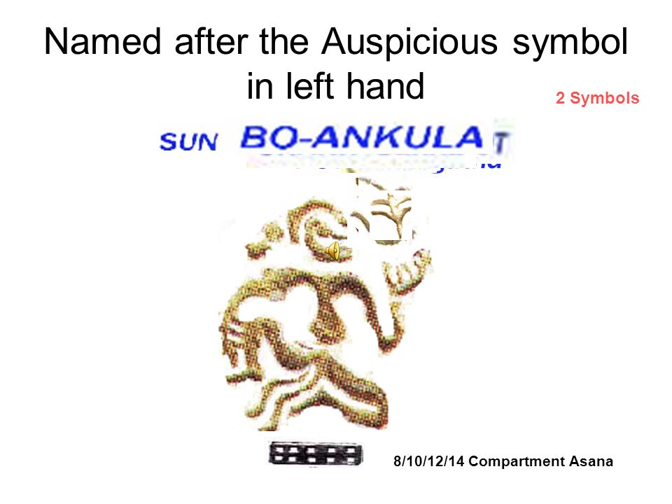 Named after the Auspicious symbol in left hand 8/10/12/14 Compartment Asana 2 Symbols