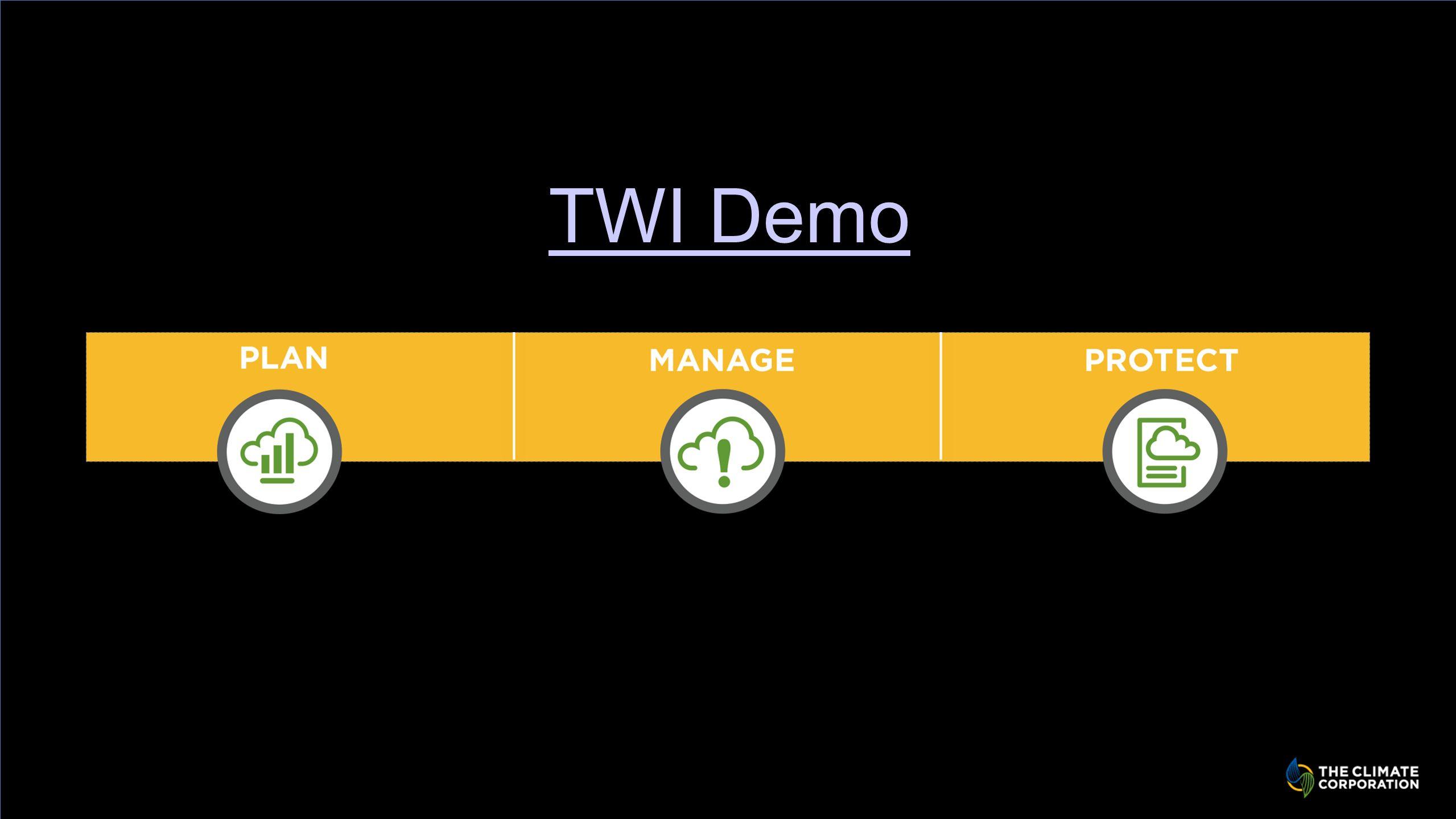 TWI Demo