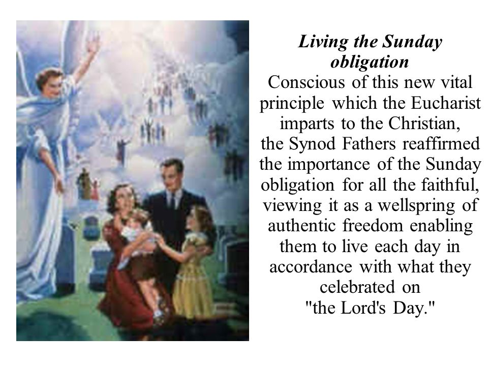 Living the Sunday obligation Conscious of this new vital principle which the Eucharist imparts to the Christian, the Synod Fathers reaffirmed the impo