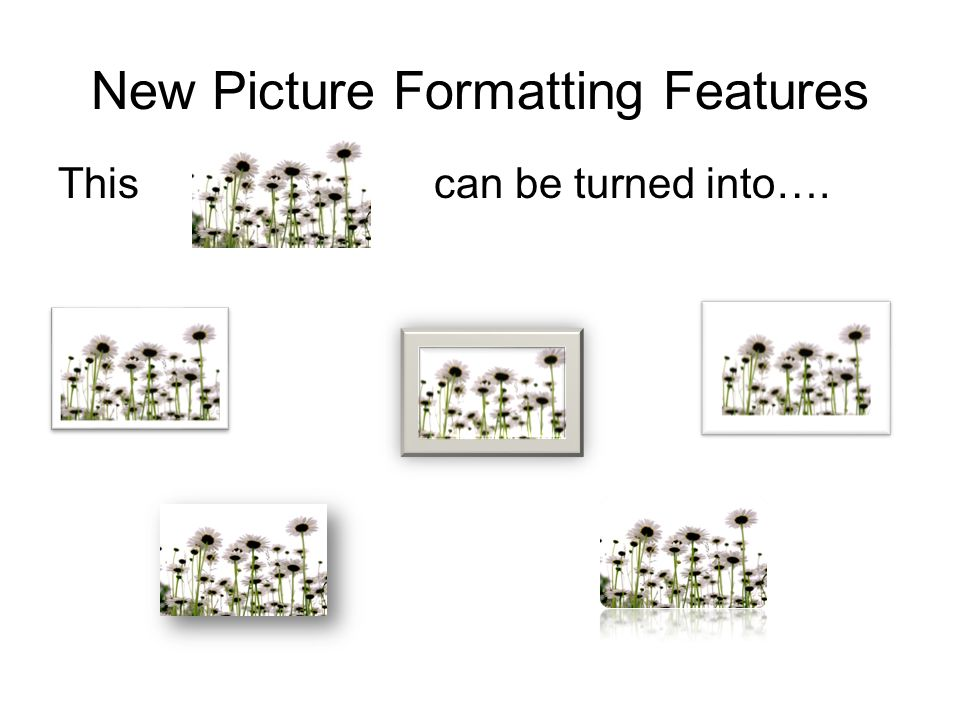 New Picture Formatting Features This can be turned into….