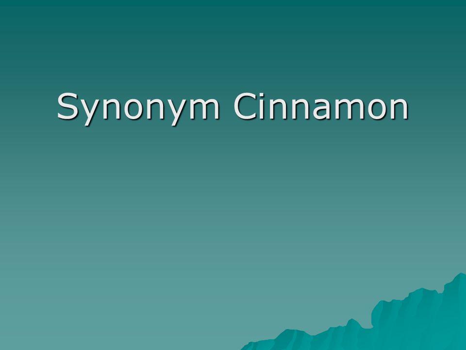 Synonym Cinnamon