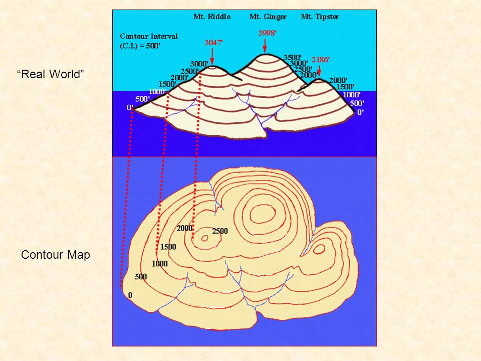 Contour Map Real World
