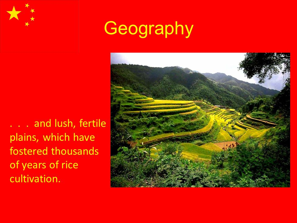 Geography... and lush, fertile plains, which have fostered thousands of years of rice cultivation.