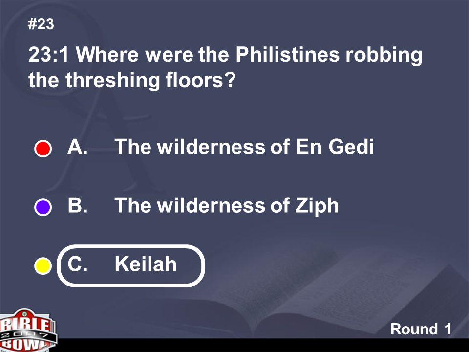 Round 1 23:1 Where were the Philistines robbing the threshing floors.