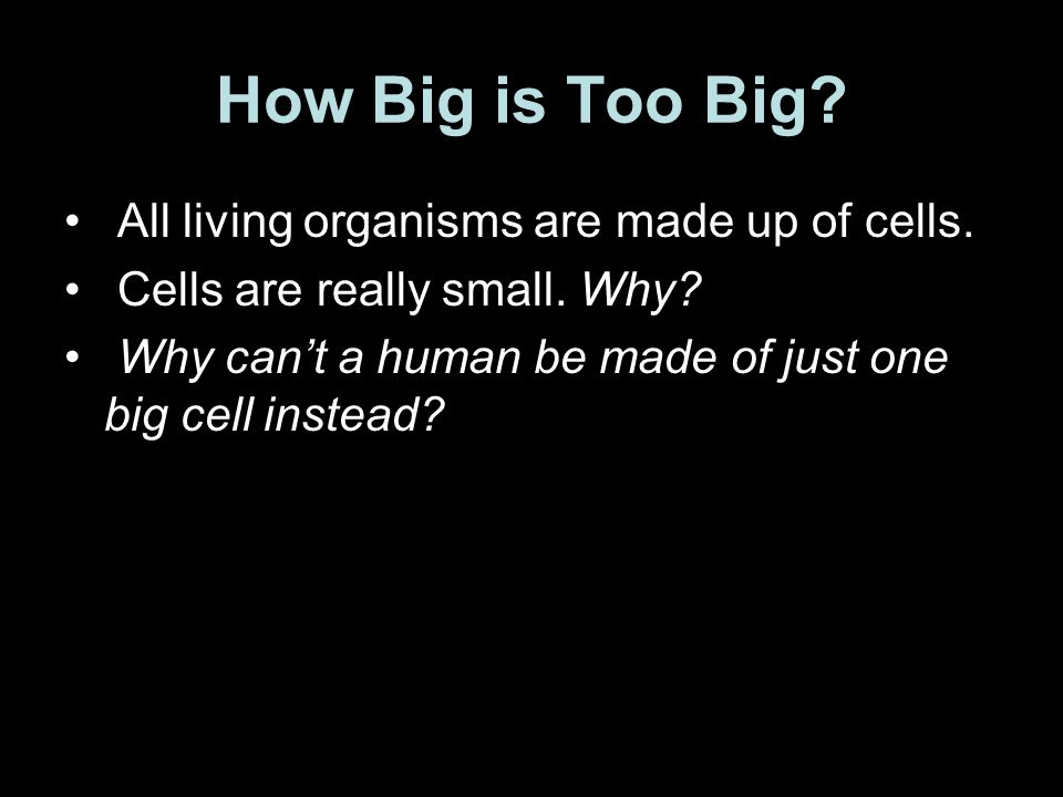 How Big is Too Big? All living organisms are made up of cells. Cells are really small. Why? Why cant a human be made of just one big cell instead?