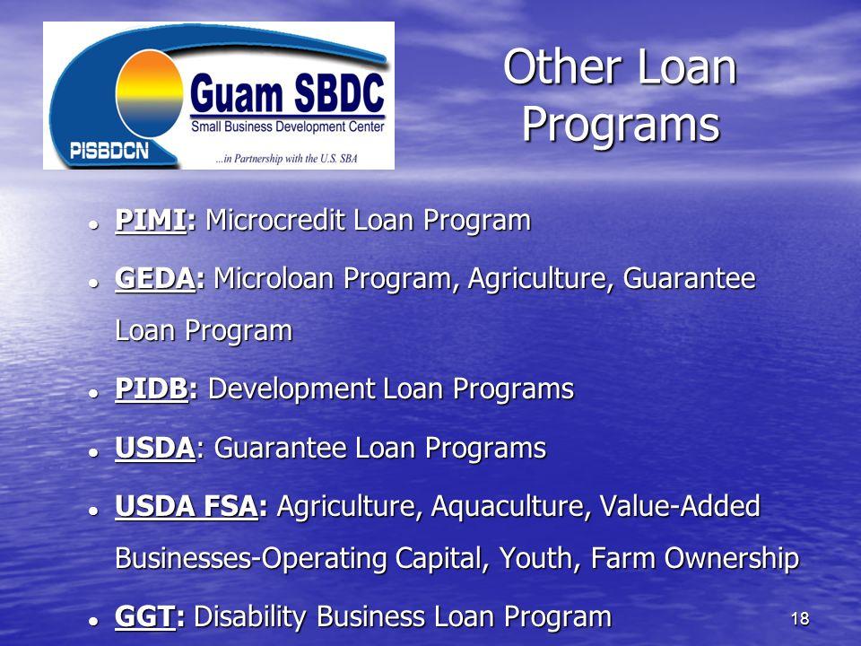 Other Loan Programs 18 PIMI: Microcredit Loan Program PIMI: Microcredit Loan Program GEDA: Microloan Program, Agriculture, Guarantee Loan Program GEDA