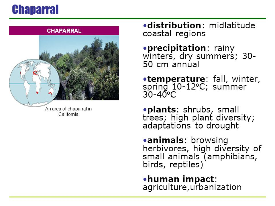 Chaparral distribution: midlatitude coastal regions precipitation: rainy winters, dry summers; 30- 50 cm annual temperature: fall, winter, spring 10-1