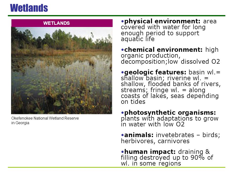 Wetlands physical environment: area covered with water for long enough period to support aquatic life chemical environment: high organic production, d