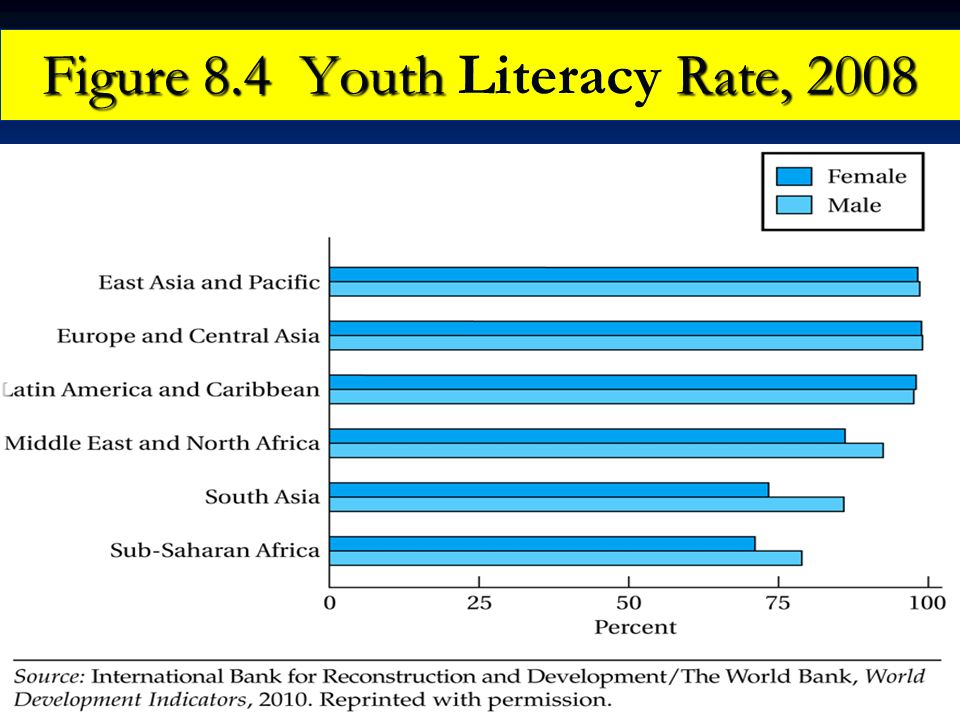 Figure 8.4 Youth Rate, 2008 Figure 8.4 Youth Literacy Rate, 2008