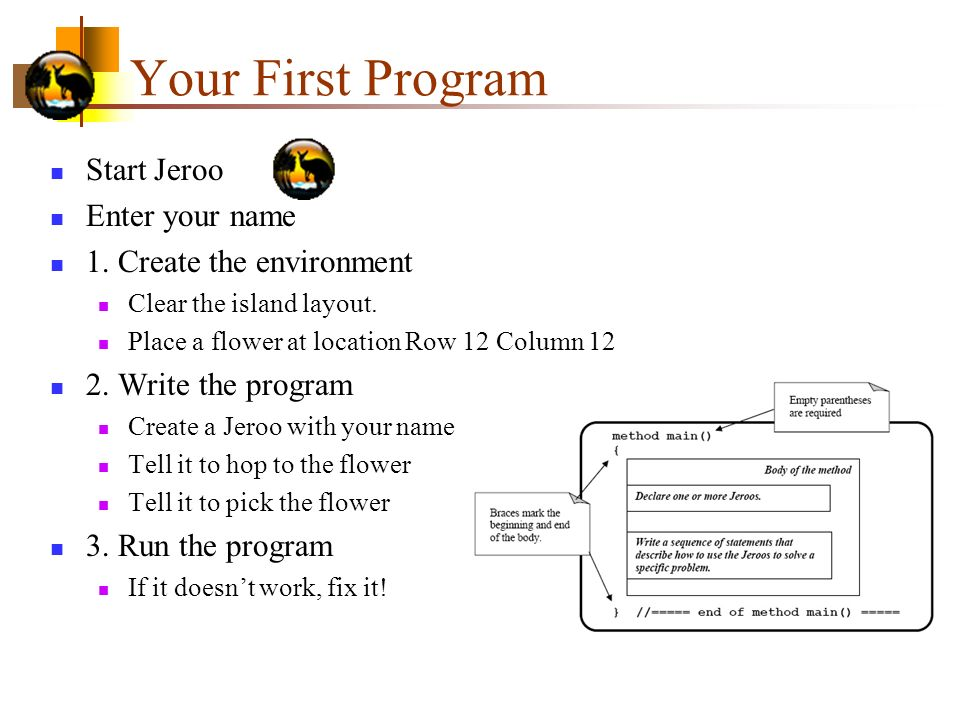 Your First Program Start Jeroo Enter your name 1.Create the environment Clear the island layout.