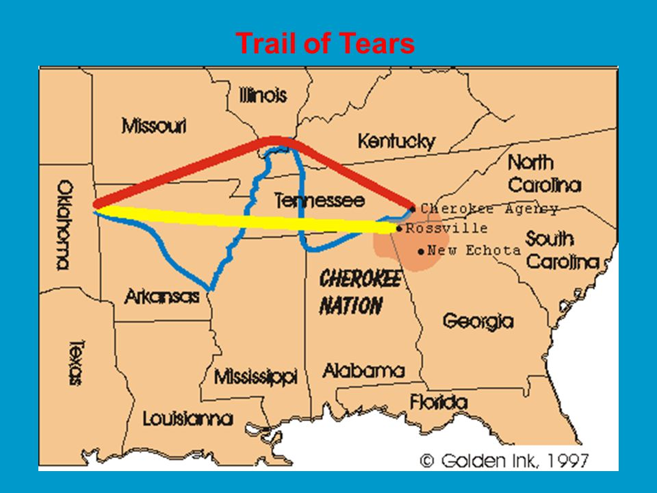 2. John Marshall ruled that the Cherokee Nation was a distinct political community, and that Georgia was not entitled to regulate the Cherokee or inva