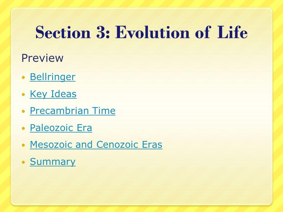 Section 3: Evolution of Life Preview Bellringer Key Ideas Precambrian Time Paleozoic Era Mesozoic and Cenozoic Eras Summary