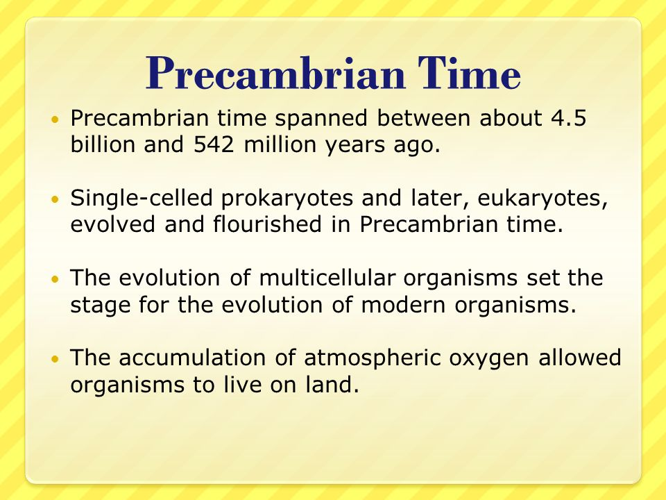 Precambrian Time Precambrian time spanned between about 4.5 billion and 542 million years ago. Single-celled prokaryotes and later, eukaryotes, evolve
