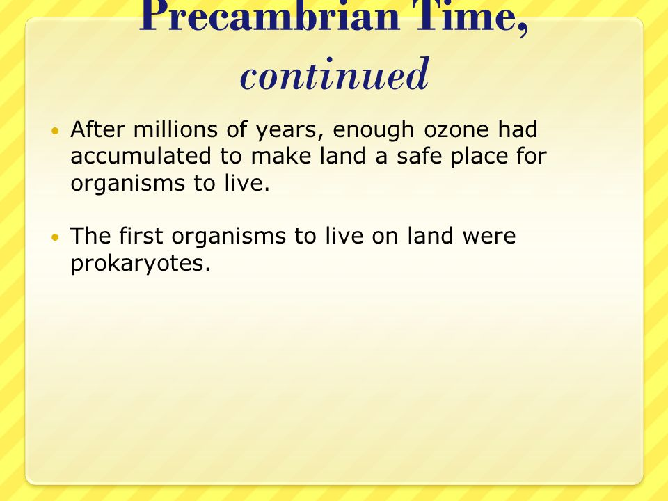 Precambrian Time, continued After millions of years, enough ozone had accumulated to make land a safe place for organisms to live. The first organisms