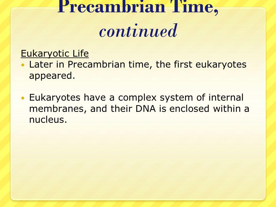 Precambrian Time, continued Eukaryotic Life Later in Precambrian time, the first eukaryotes appeared. Eukaryotes have a complex system of internal mem