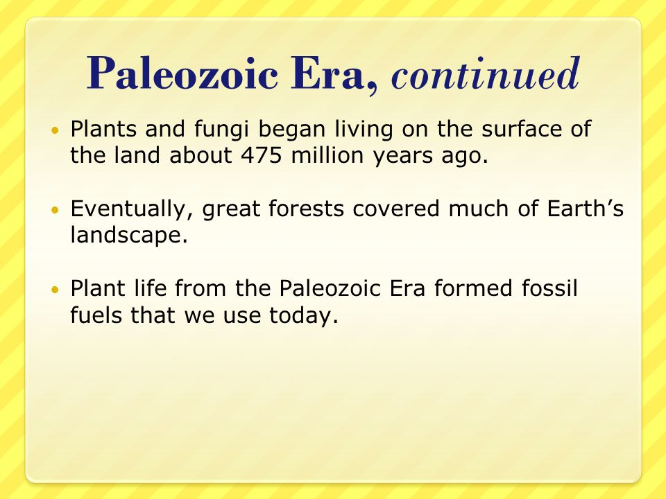 Paleozoic Era, continued Plants and fungi began living on the surface of the land about 475 million years ago. Eventually, great forests covered much