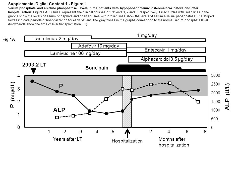 2003.2 LT Alphacarcidol 0.5 μg/day Adefovir 10 mg/day Lamivudine 100 mg/day Entecavir 1 mg/day Hospitalization P (mg/dL) ALP (U/L) P ALP Bone pain Years after LTMonths after hospitalization 123452468 1 mg/day Supplemental Digital Content 1 - Figure 1.