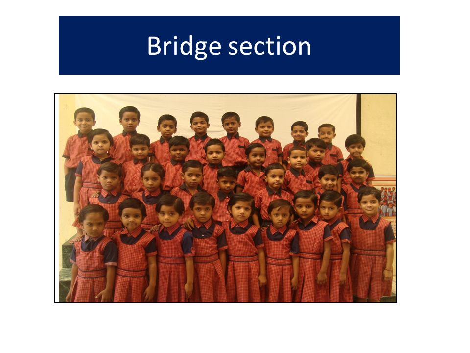 Bridge section
