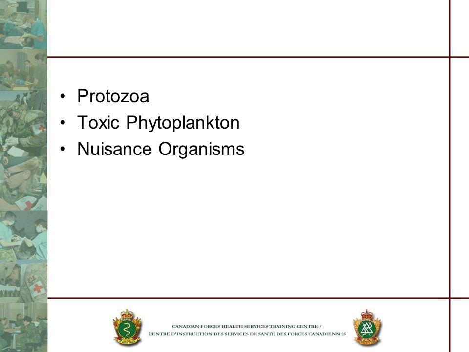 Protozoa Toxic Phytoplankton Nuisance Organisms