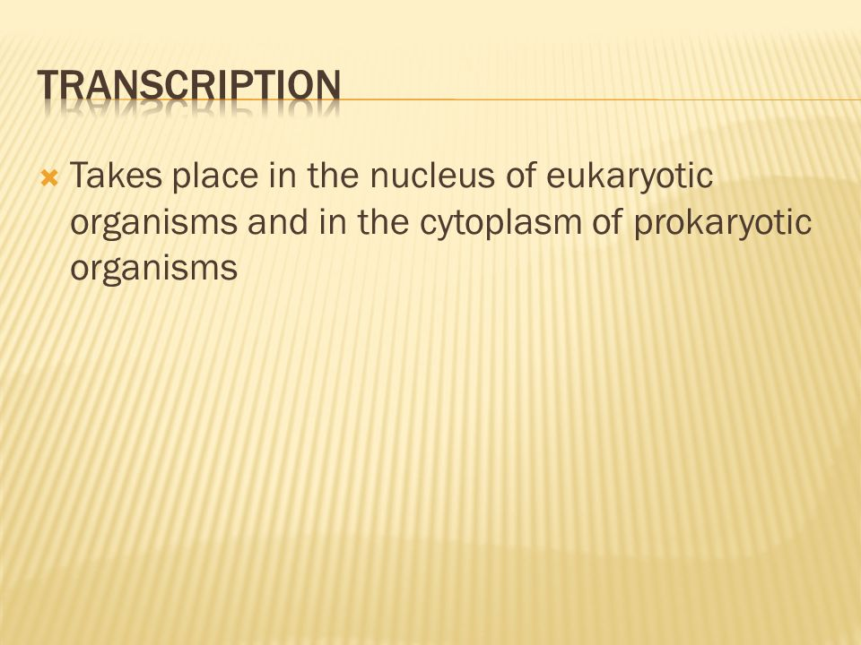 Takes place in the nucleus of eukaryotic organisms and in the cytoplasm of prokaryotic organisms