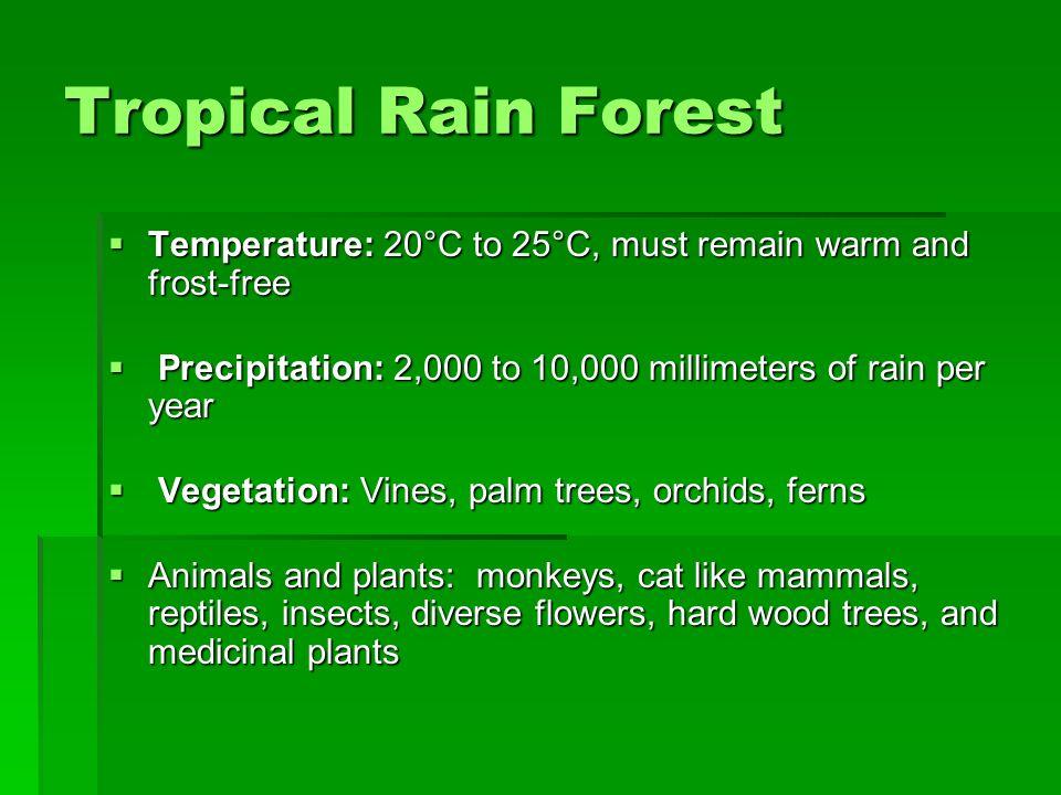 Tropical Rain Forest Temperature: 20°C to 25°C, must remain warm and frost-free Temperature: 20°C to 25°C, must remain warm and frost-free Precipitati