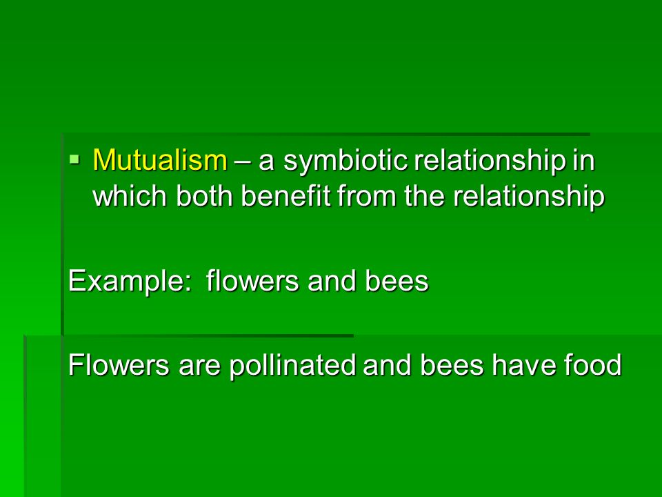 Mutualism – a symbiotic relationship in which both benefit from the relationship Mutualism – a symbiotic relationship in which both benefit from the r