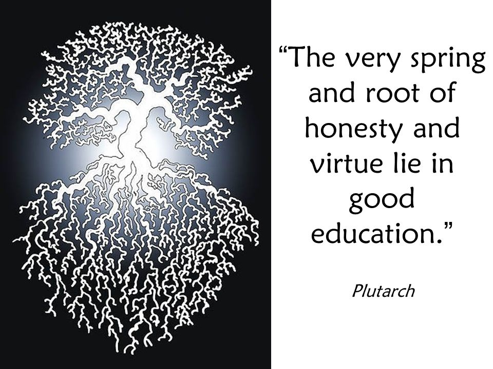 The very spring and root of honesty and virtue lie in good education. Plutarch