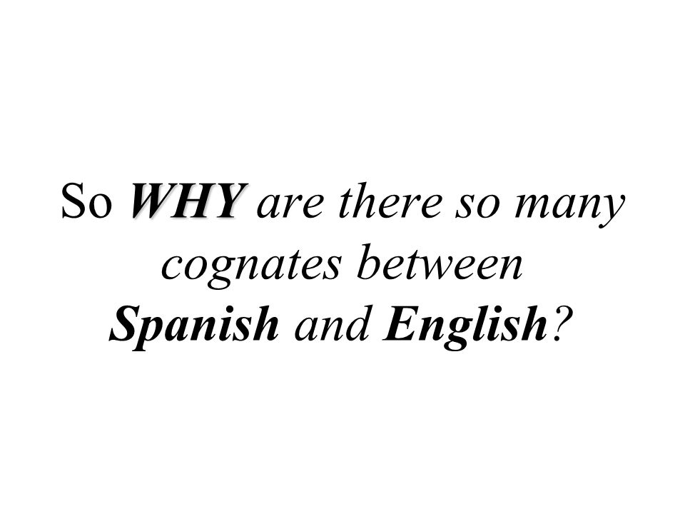 WHY So WHY are there so many cognates between Spanish and English?