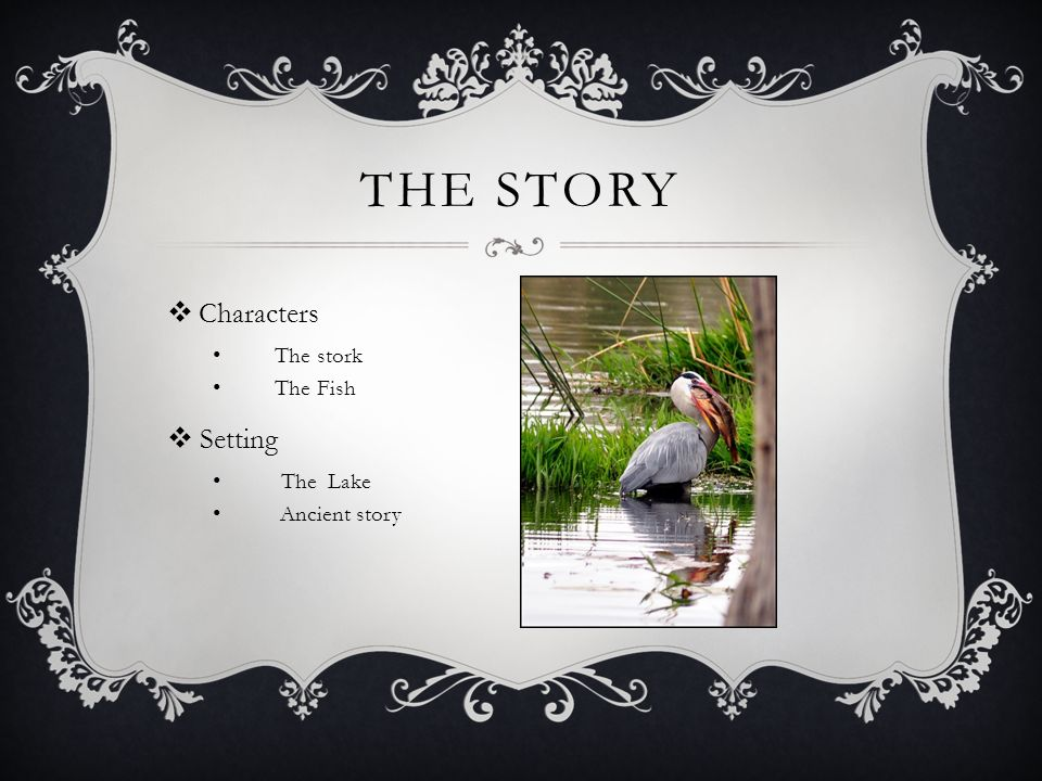 THE STORY Characters The stork The Fish Setting The Lake Ancient story